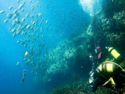 Cabo de Gata的高级开放水域潜水员课程