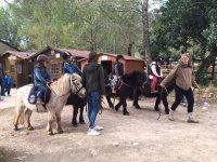 Paseo en pony en Club de la Herradura en Buñola 1h