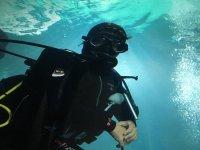 Buzo durante la inmersión en la piscina del acuario