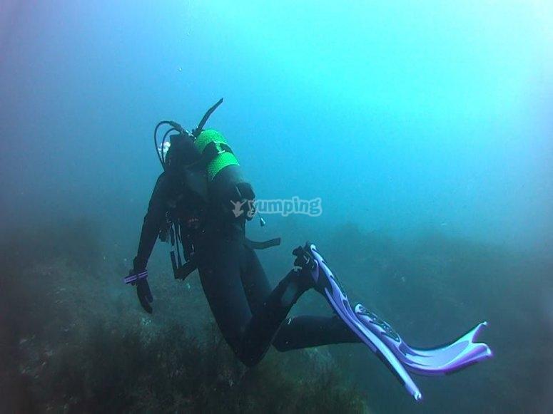 在海中潜水的洗礼