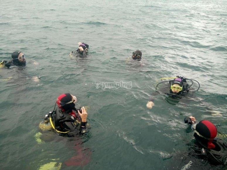 在密闭水中进行潜水