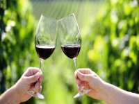 Offering between Valencian vineyards
