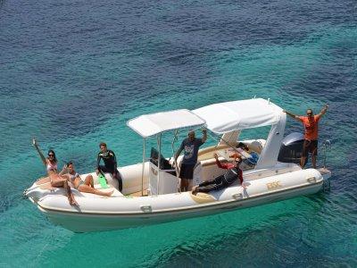 Orcasub Paseos en Barco
