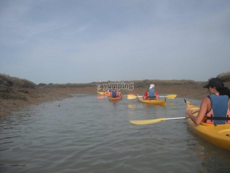 Paseo por las marismas de Cadiz en kayaks