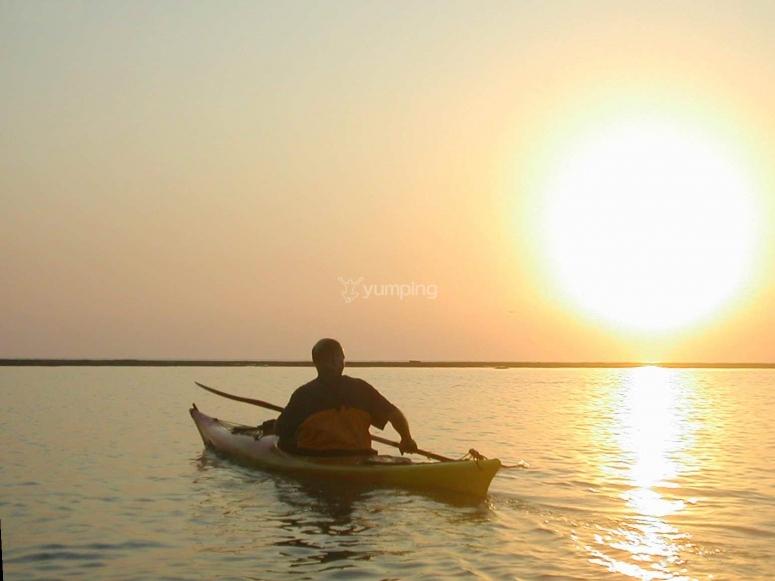Ruta en kayak Bahía de Cádiz