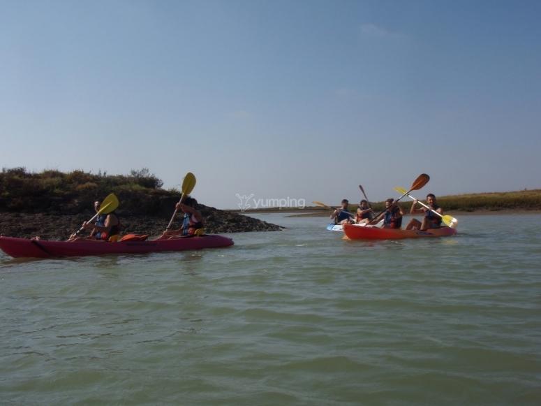 Paseo en kayak por las marismas Cádiz