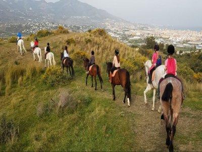 Ruta a caballo principiantes más clases en Mijas