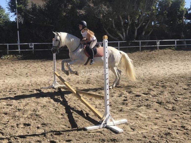 Horseback riding in Mijas