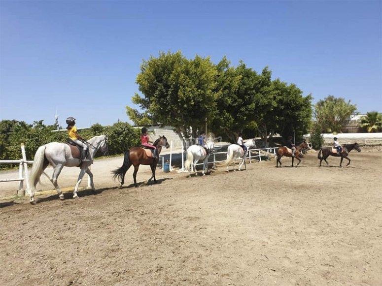 Horseback riding class in groups