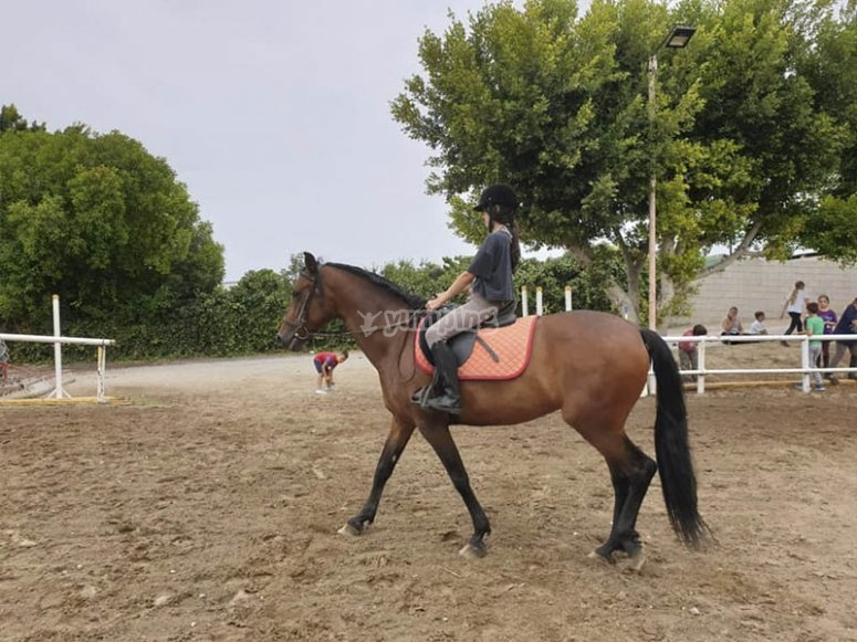Horseback riding during a private lesson