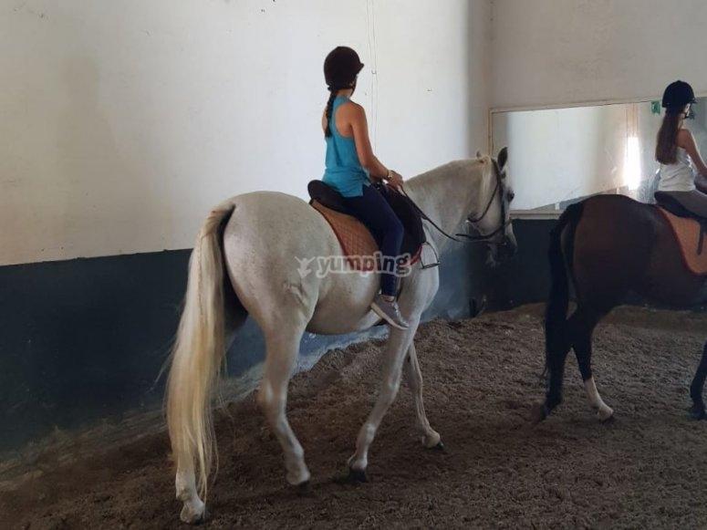 Horse riding class in Mijas
