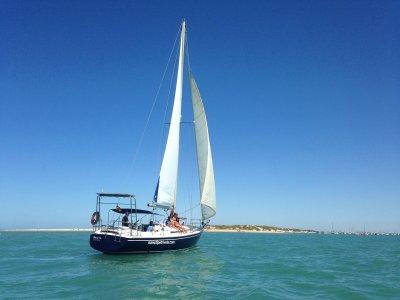 Giro in barca a vela nel parco naturale del Bahía de Cádiz 1 h