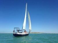 Paseo en velero Parque Natural Bahía de Cádiz 1 h