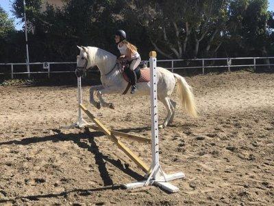 Lezioni di equitazione con esperienza Mijas Costa 45min
