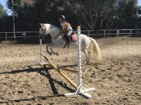 Doing horseback riding