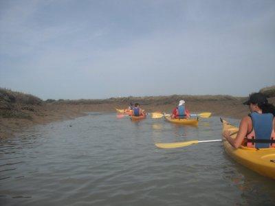 Curso iniciación kayak 6 horas Sancti-Petri