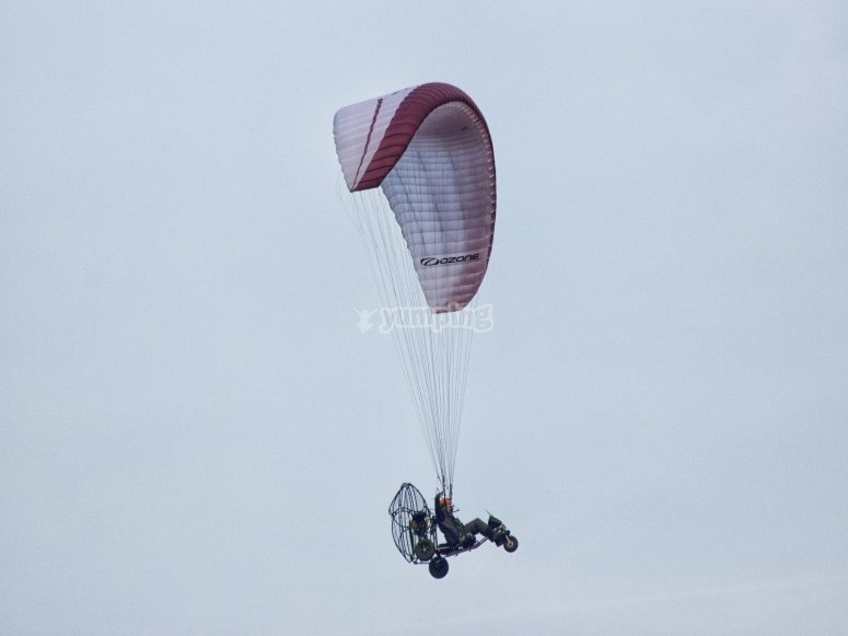 Paraglider from below