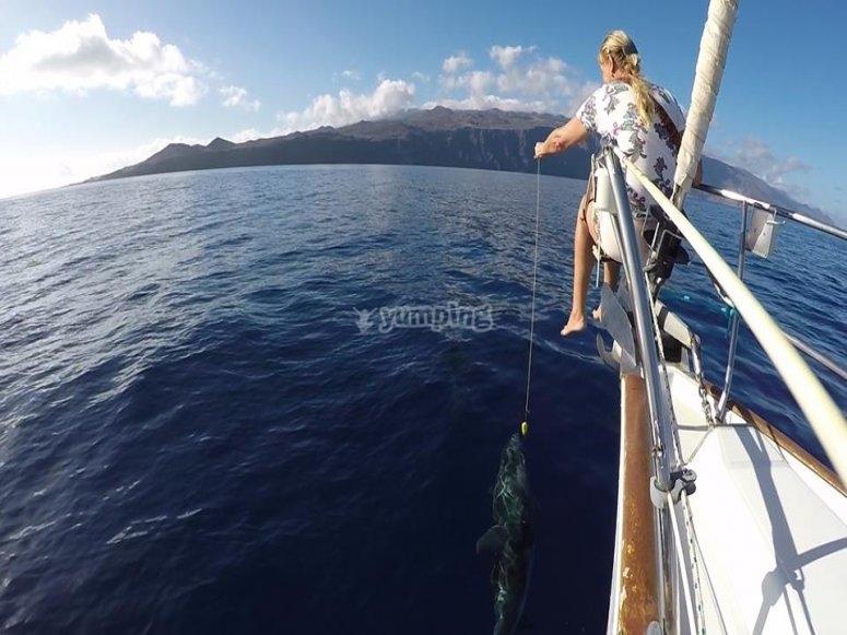 Paseo en barco por El Hieerro 3 horas