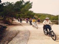 Alquiler bicicleta de paseo Benidorm