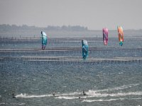 varias personas practicando kitesurf en el mar