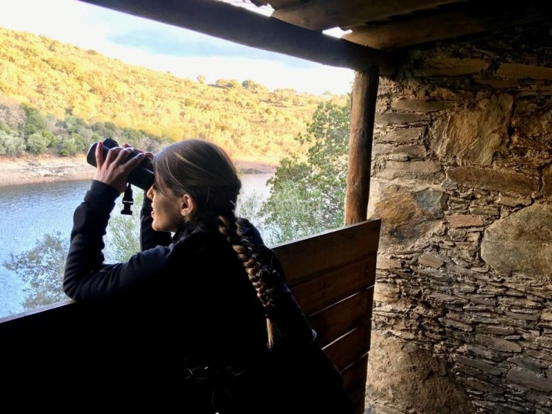 Watching the landscape with binoculars