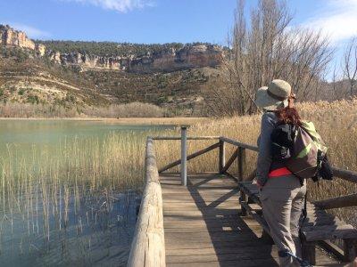 Excursión ornitológica alrededores Madrid mañanas