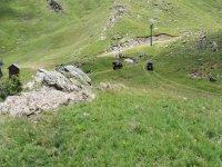Ruta en quad por el campo