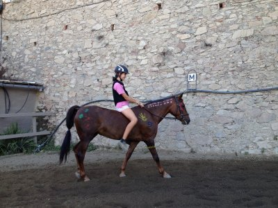 Fiesta de cumpleaños con caballos 2h Badalona