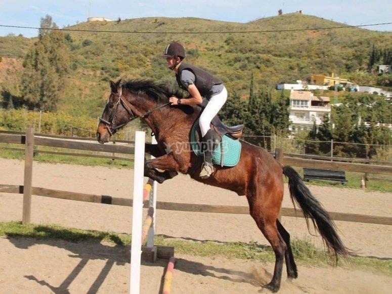 Giovane che salta con il suo cavallo