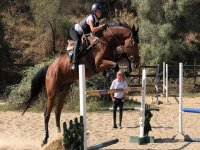 Horse dressage and jumping class in Mijas 1h