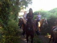 Guia sobre el caballo con los visitantes