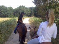 Mirando hacia atras desde el caballo