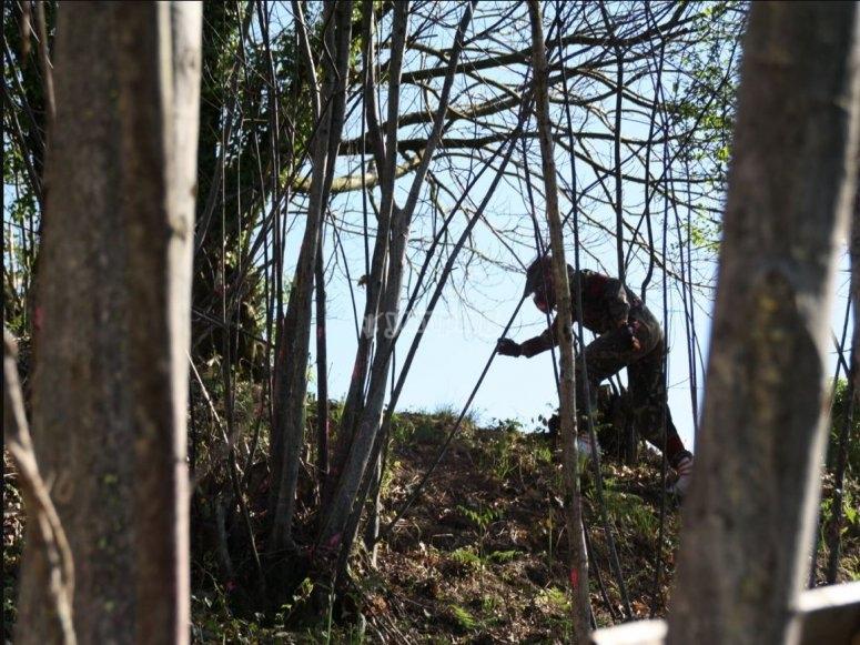 树林中的彩弹射击玩家
