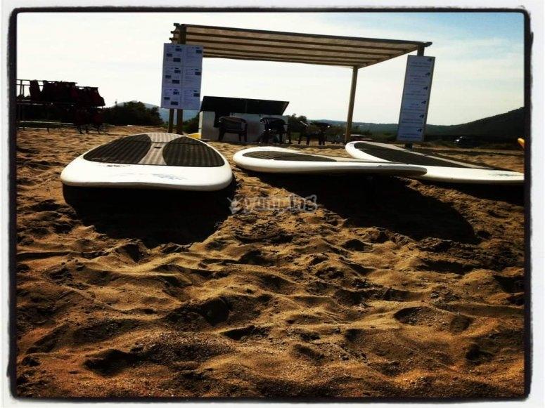 在沙子桨冲浪板