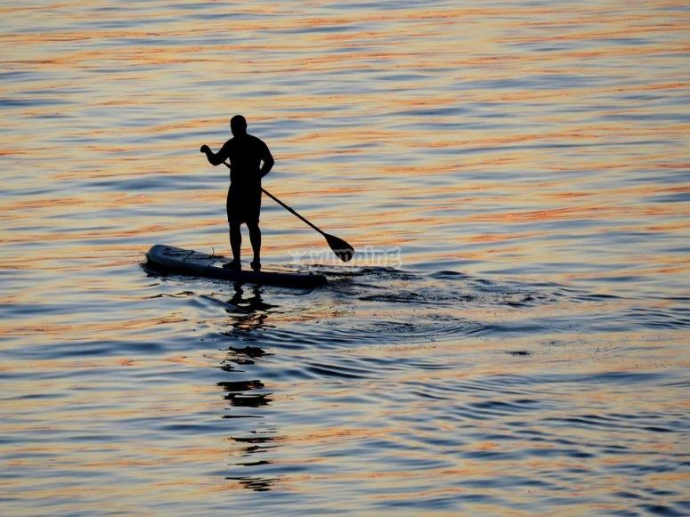 在地中海桨冲浪中划桨
