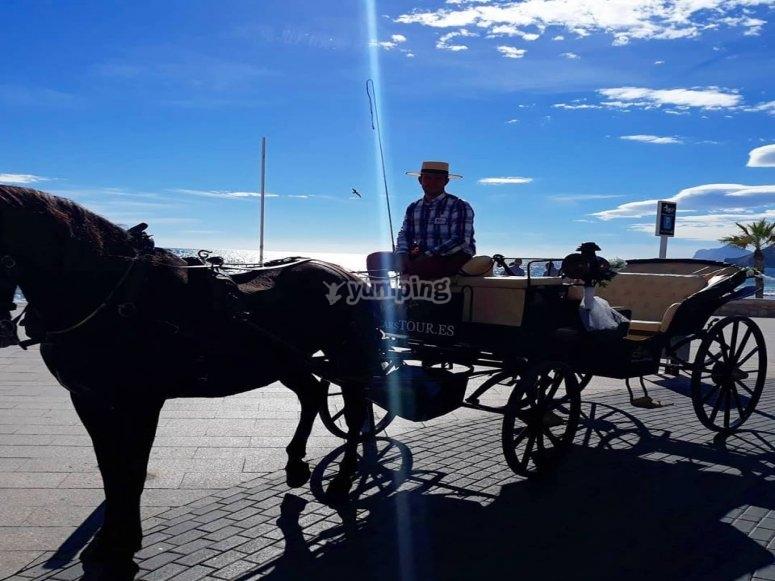 Celebraciones coche de caballos Calpe