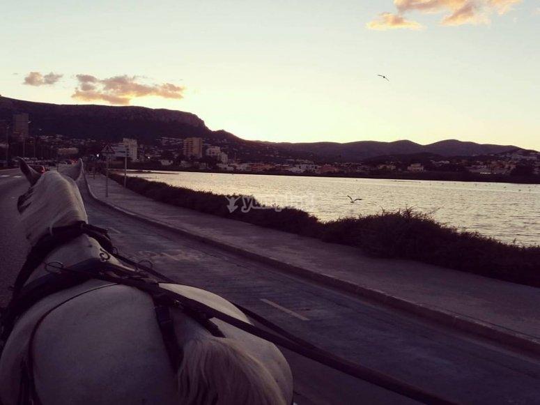 Coche de caballos por Calpe