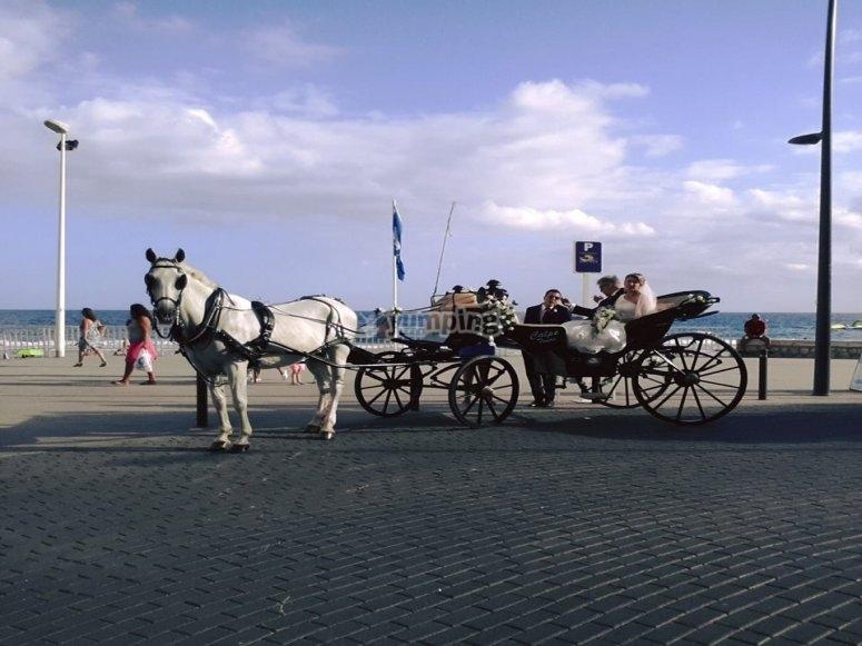 Paseo de boda en coche de caballos