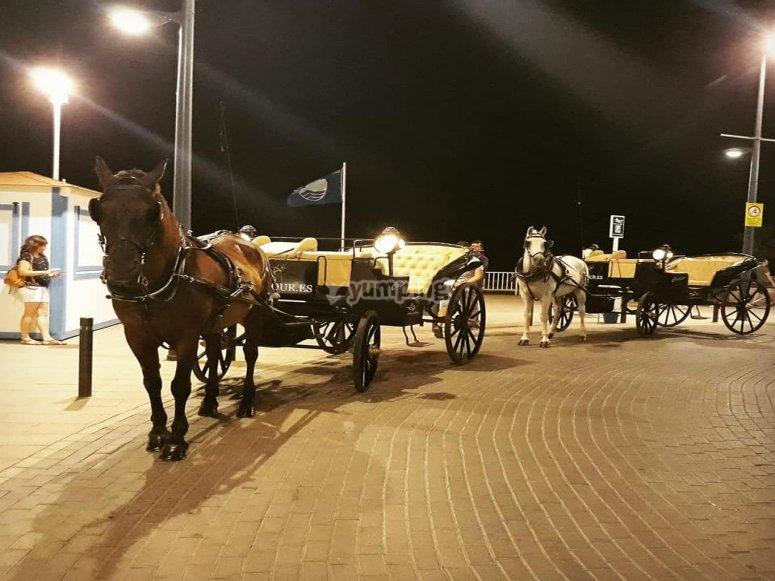 Paseo nocturno en Calpe coche de caballos