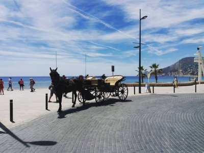 Horse Car Ride Calpe Salinas 45分钟