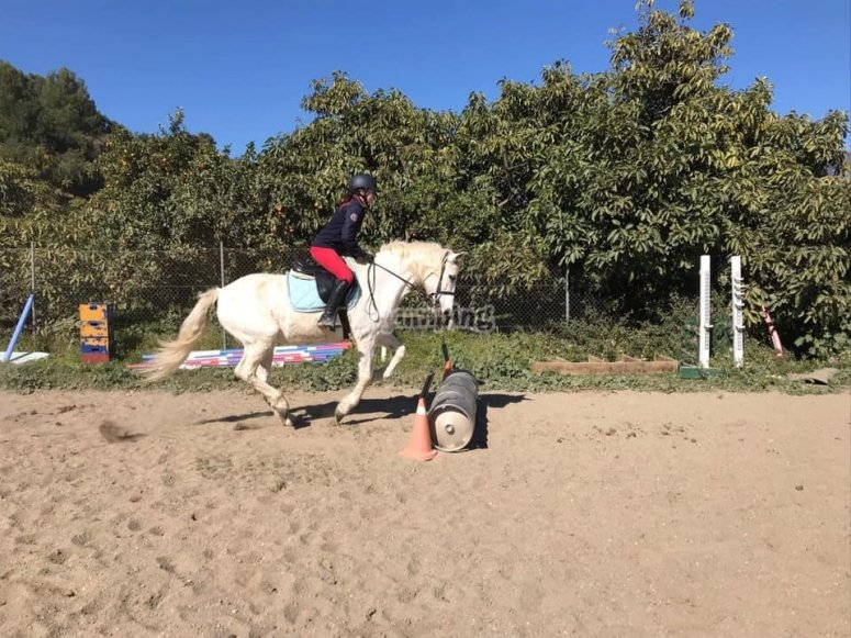 Jumping circuit in our facilities