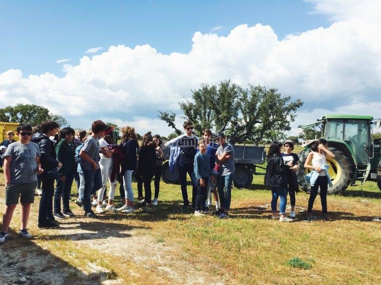 Gruppo di studenti che visitano il bestiame di Salamanca