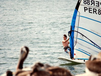 Windsurfing material rental 1h in Marbella