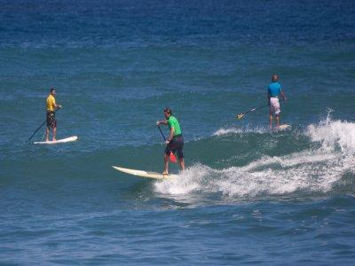 Alquiler material paddle surf en Marbella 1 hora