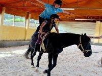 Entrenamiento con caballos en finca
