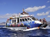 乘船游览4小时半,南海岸富埃特文图拉岛