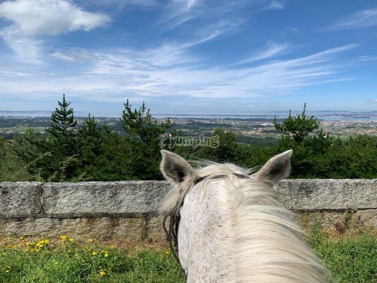 Vistas de Vilanova de Arousa a caballo