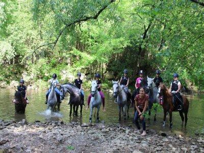 Campamento equitación verano Irrueta 5 días