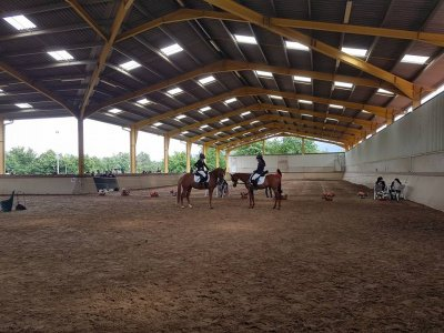 Horse riding class 1 hour a week Irrueta