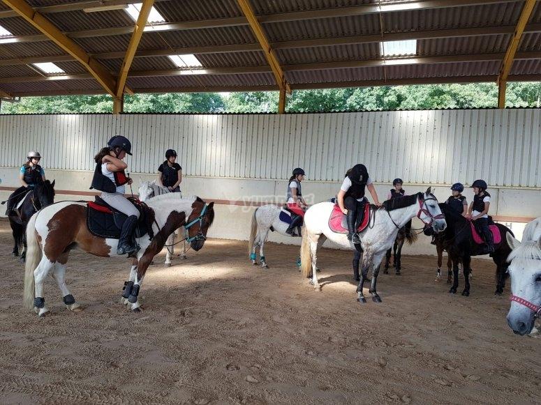 Taller iniciación a la equitación